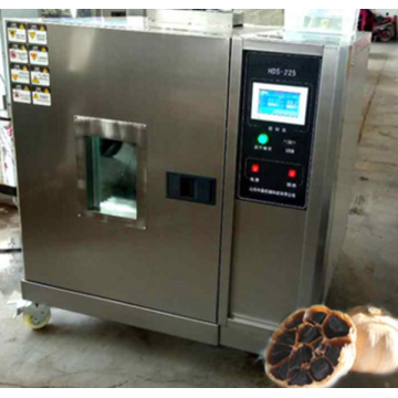 Black Garlic Equipment and International