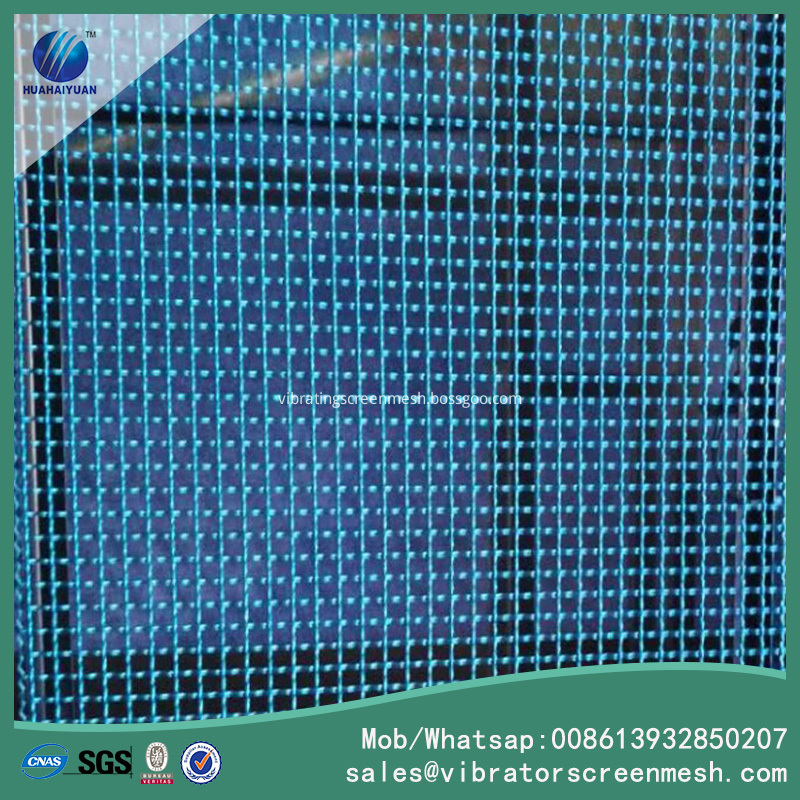 Blue Painting Crimped Wire Mesh