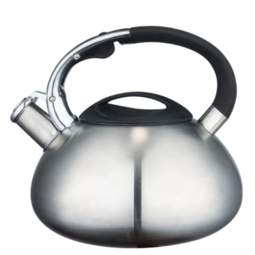 4.5L teal tea kettle
