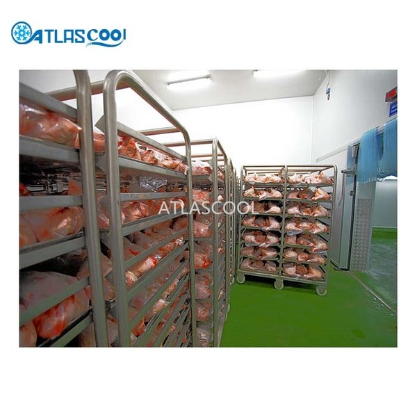 Poultry tunnel blast freezers