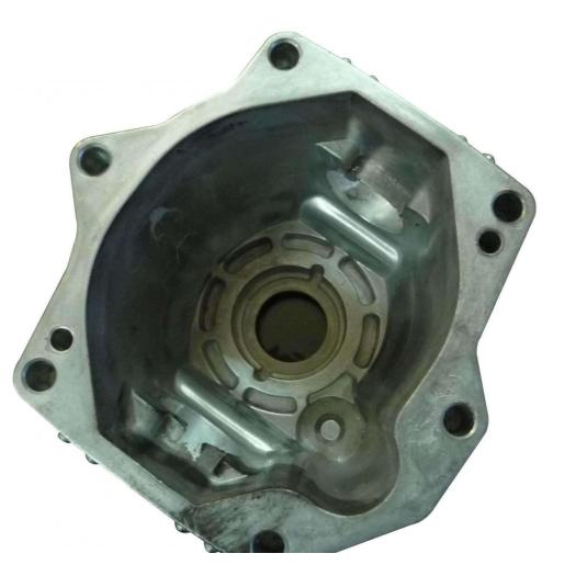 Die Casting High Pressure Cleaning Pump and Washer