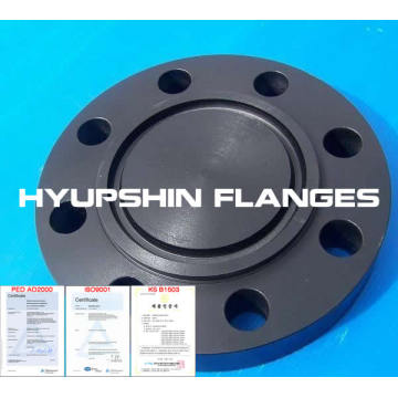 RTJ flange Ring Type Joint Flange Blind SW