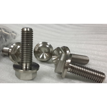 Gr1 pure Titanium screw