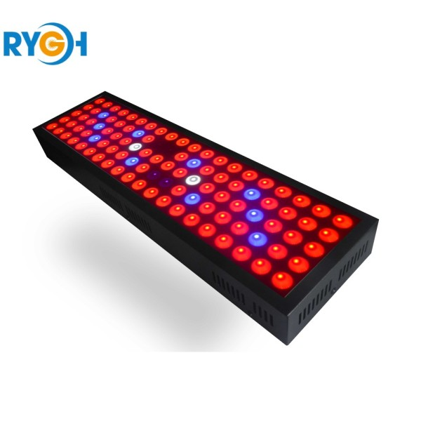 300W LED Grow Light for Greenhouse and Flowering