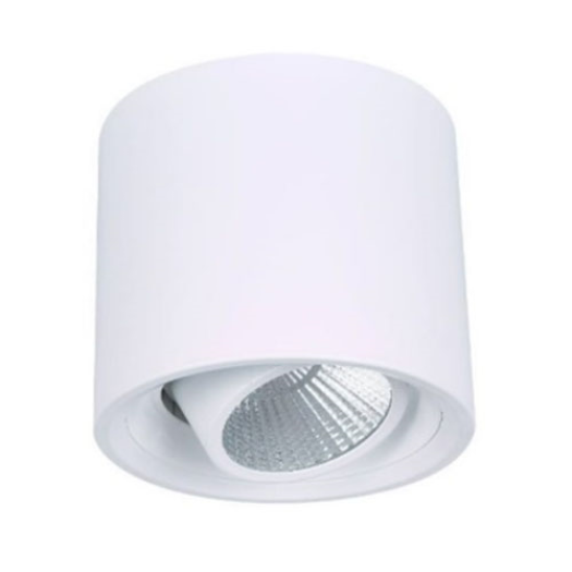 Cylindrical Decorative LED Downlight