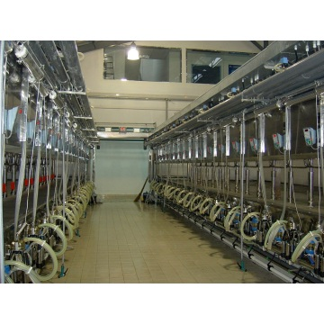 Automatic parallel quick-release milking parlor