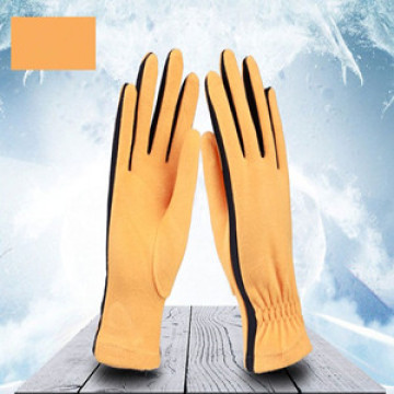 Custom Logo Polar Fleece Gloves New Design