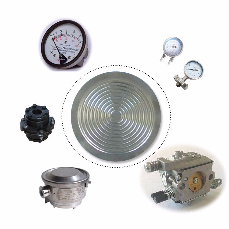 Best price 304 Stainless steel diaphragm