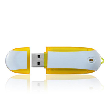 Promotion Plastic USB Flash Drive 8GB with Logo
