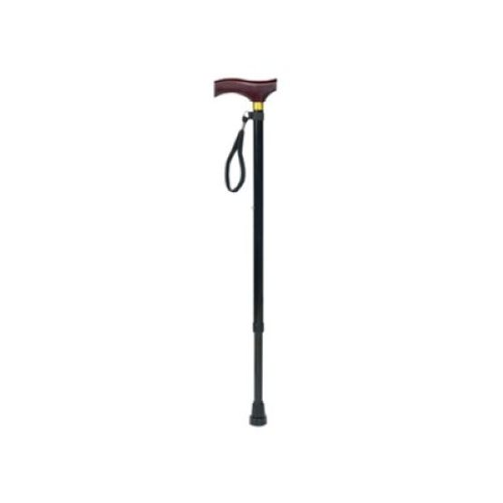 Walking Stick With Plastic Handle