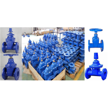 Ductile iron sluice gate valve