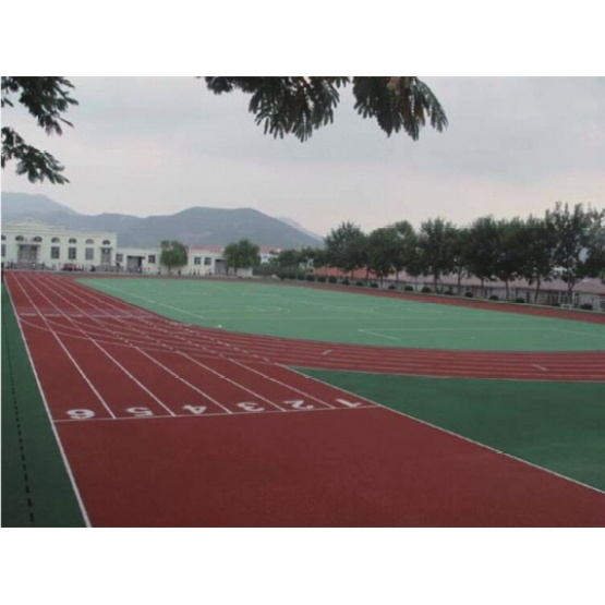 Professional 3:1 Self-Aligned Pavement Materials Courts Sports Surface Flooring Athletic Running Track