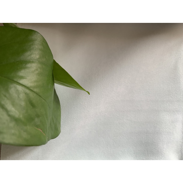 2019 New Non-Bright Velvets Window Curtain Fabric