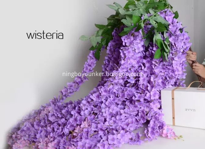 Wisteria Purple Png