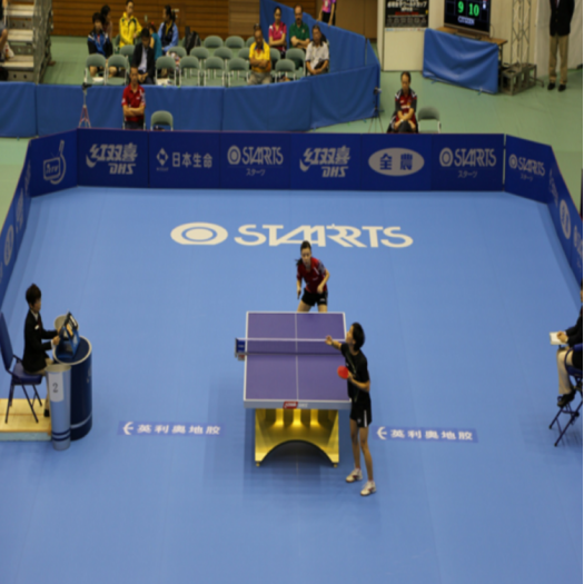 Table Tennis Interlock Mat