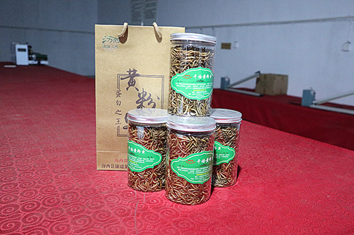 pet food dried tenebrio molitors
