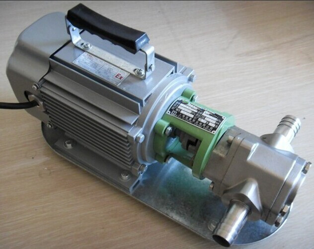 WCB portable stainless steel gear pump 2_