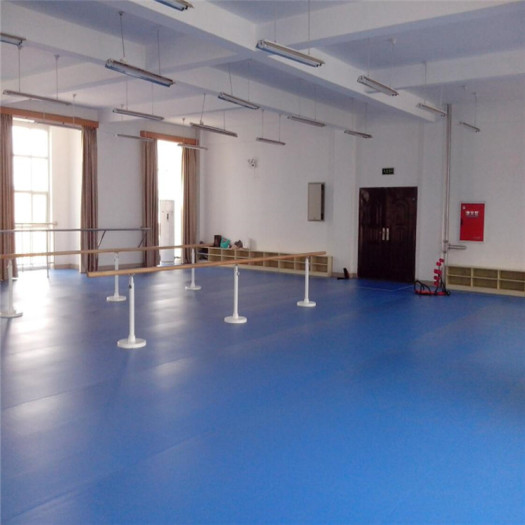 Enlio Indoor PVC Sports Flooring Dance Room