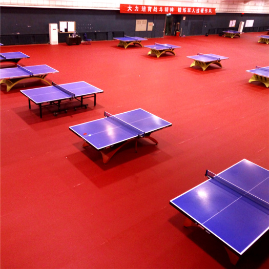 Table Tennis Flooring court mat