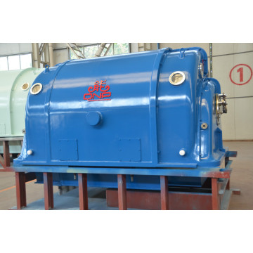 Household Steam Turbine Generator