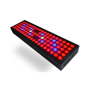 300W LED Grow Light For Greenhouse Full Spectrum