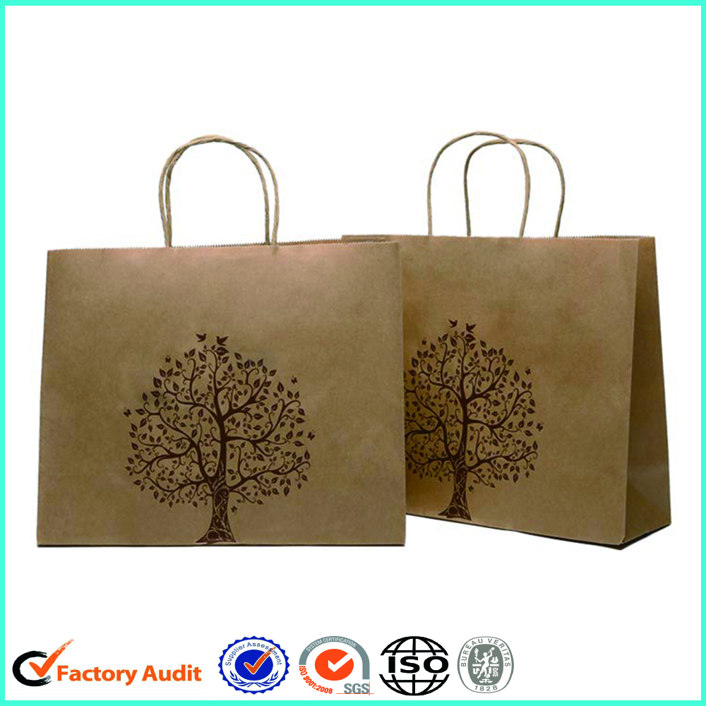 Eco Friendly Paper Shopping Bags With RibbonHandle