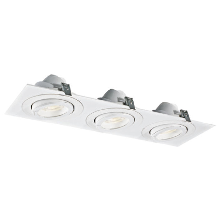 Warm White Powerful 30W3 LED Downlight