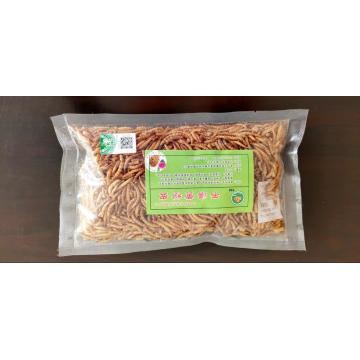Rich Protein Mealworm for export