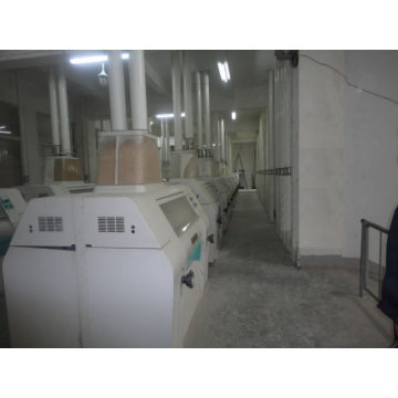 300-1000ton/D Wheat Flour Machine