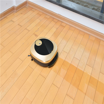 Home Car Vacuum Robot Largest  Dust Ball