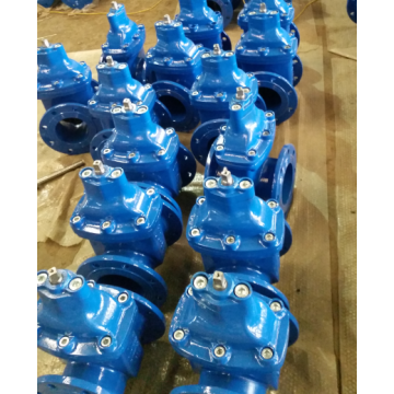 Resilient seated DI gate valve