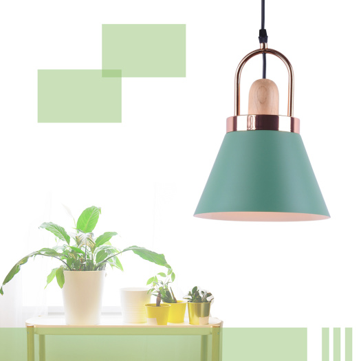 Modern Newest   Pendant Lights For Home