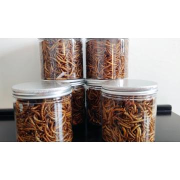 pet snake food of mealworm