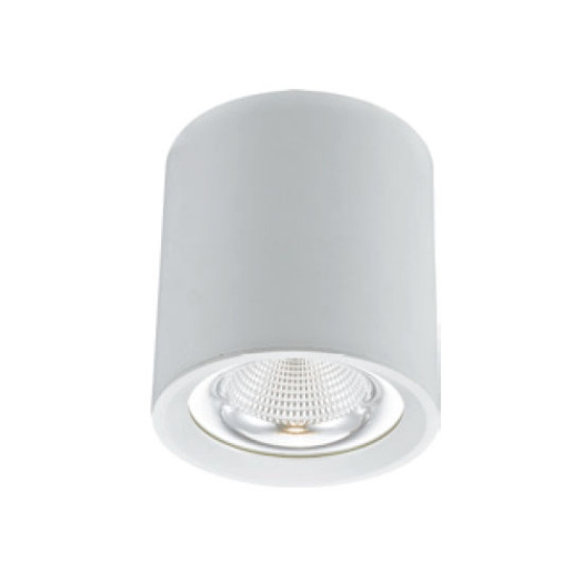Decorative Cylindrical 40W LED Downlight