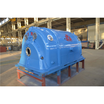 2 poles steam turbine generator