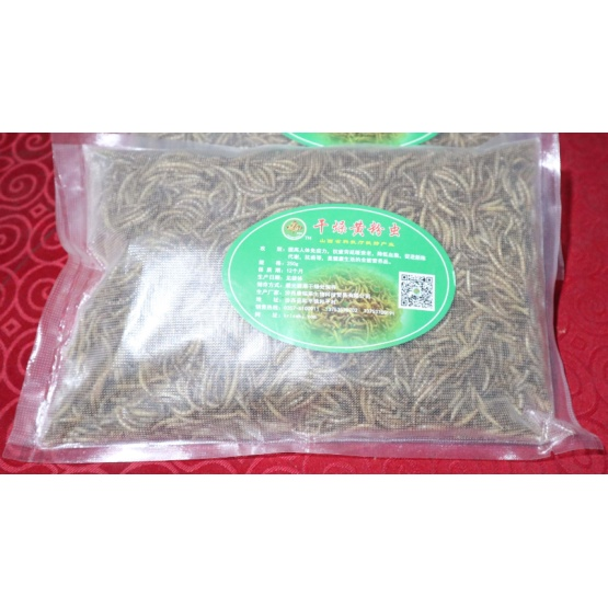 Yellow Mealworms Dried Mealworm