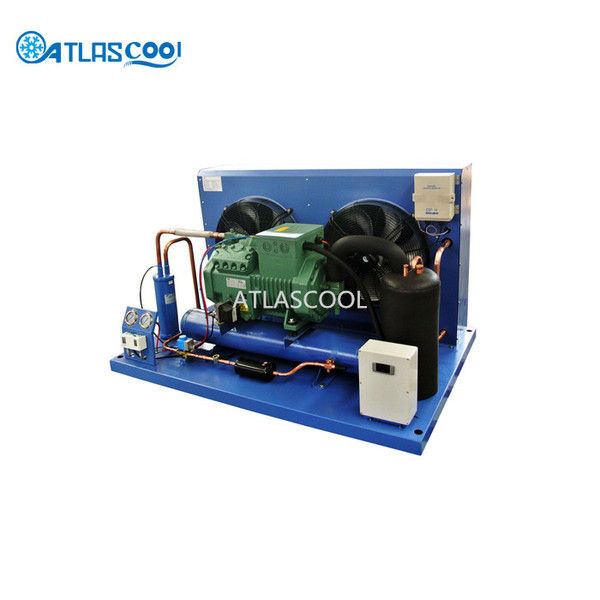Compressor Freezer Condensing Unit for Walk in Freezer