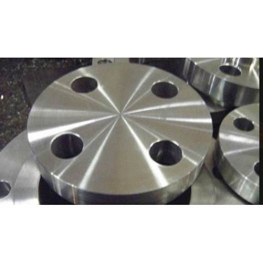 Forged Carbon Steel and Stainless Steel Blind Flanges