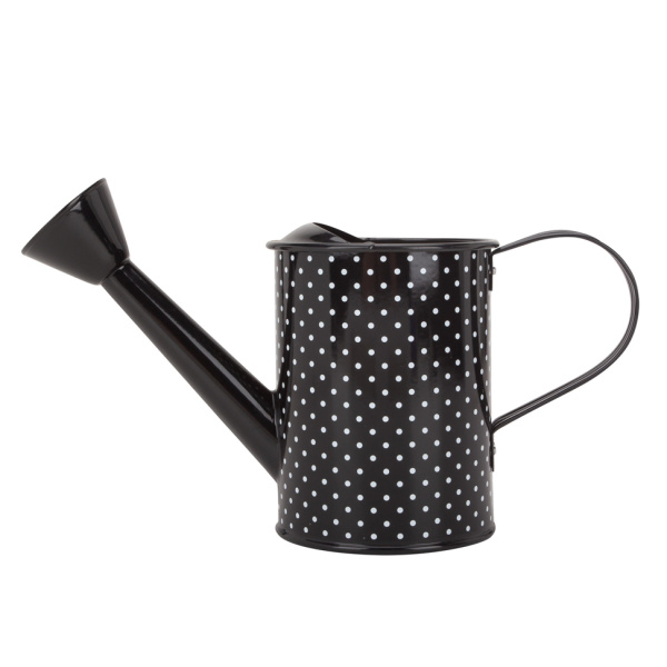 Personalized Black Indoor Watering Can Metal