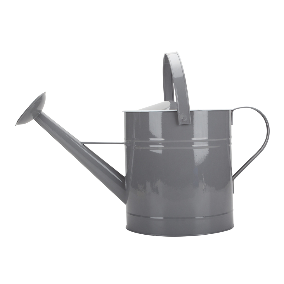 Minecraft Watering Can
