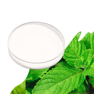 Wholesale Stevia Sugar/stevia sugar factory