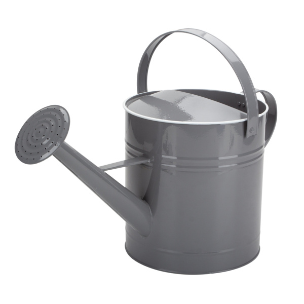 Mini Home Depot Watering Can Indoor