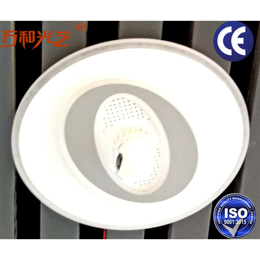 New model intelligent guest bedroom ceiling lamp