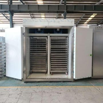 Hot Air Circulation Onion Drying Machine