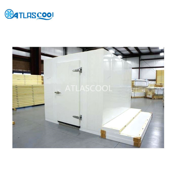 Mobile portable freezer cold storage room