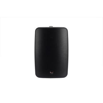 6.5 inch Wall Hanging Loudspeakers