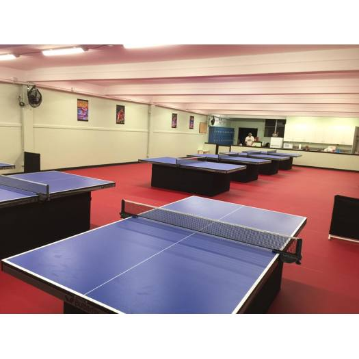 ITTF Certificated Vinyl Table Tennis Floor