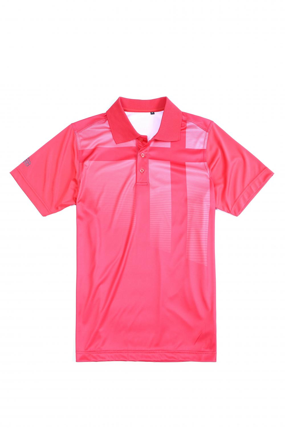 Men's golfer polo