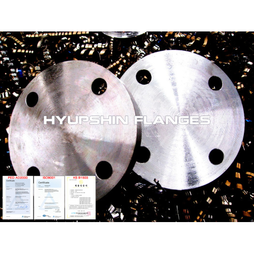 Blank flange Blind flange raised face class PN