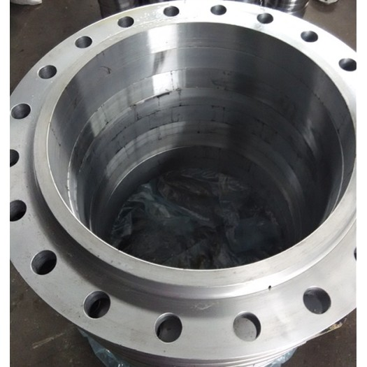 Stainless Steel Forging Flanges with ANSI